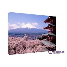 Картина на холсте по фото Модульные картины Печать портретов на холсте Спящий вулкан