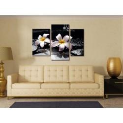 Лилии и камни - Модульная картины, Репродукции, Декоративные панно, Декор стен