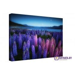 Ночные цветы - Модульная картины, Репродукции, Декоративные панно, Декор стен