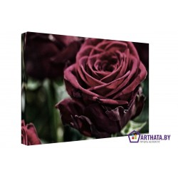 Красная роза - Модульная картины, Репродукции, Декоративные панно, Декор стен