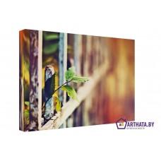 Картина на холсте по фото Модульные картины Печать портретов на холсте В ботаническом саду