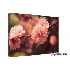 Картина на холсте по фото Модульные картины Печать портретов на холсте Алые цветы