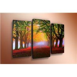 Модульная картина на стекле - m-000124 - Модульная картины, Репродукции, Декоративные панно, Декор стен