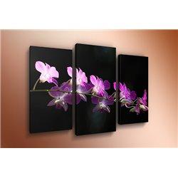 Модульная картина на стекле - m-000125 - Модульная картины, Репродукции, Декоративные панно, Декор стен