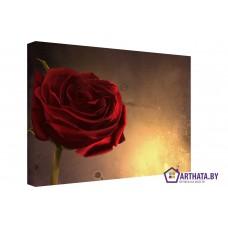 Картина на холсте по фото Модульные картины Печать портретов на холсте Винтажная роза