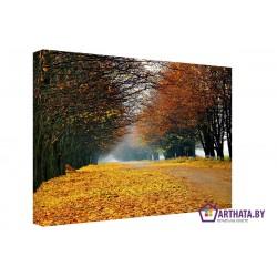 Желтый ковер - Модульная картины, Репродукции, Декоративные панно, Декор стен