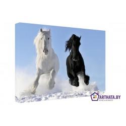 Два коня - Модульная картины, Репродукции, Декоративные панно, Декор стен