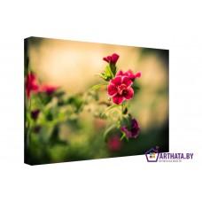 Картина на холсте по фото Модульные картины Печать портретов на холсте Луговые цветы