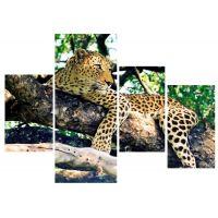 Леопард на ветвях