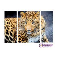 Портреты картины репродукции на заказ - Леопард