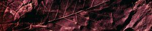 skinali-katalog-abstract-171