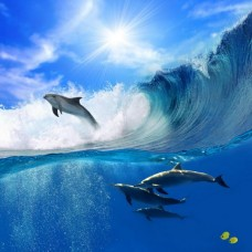 Фотообои - Уйти от волны