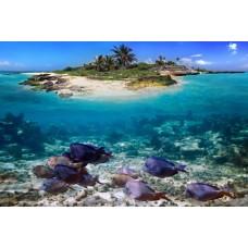 Фотообои - Необитаемый остров