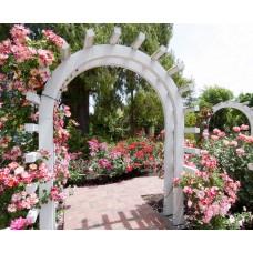 Фотообои - Свадебный сад