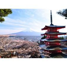 Фотообои - Гора Фудзи