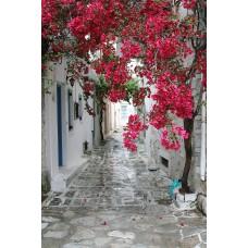 Фотообои - Старинные улочки