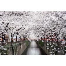 Фотообои - Канал реки в Японии