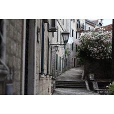 Фотообои - Литературный Париж